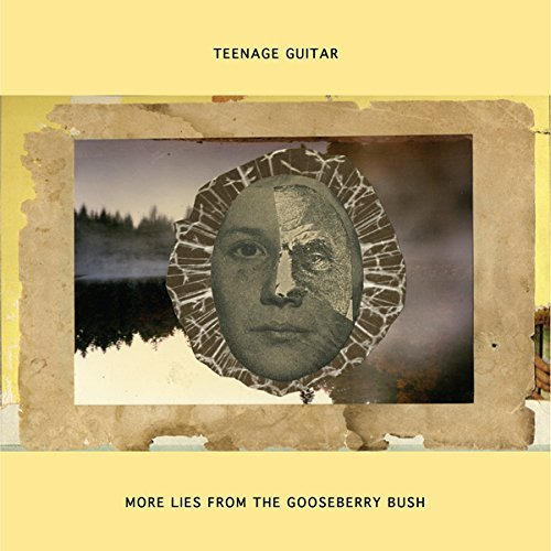 teenage-guitar-more-lies-from-the-gooseberry