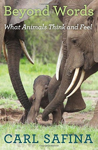 Carl Safina Beyond Words What Animals Think And Feel