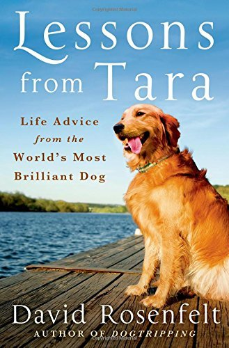 david-rosenfelt-lessons-from-tara-life-advice-from-the-worlds-most-brilliant-dog