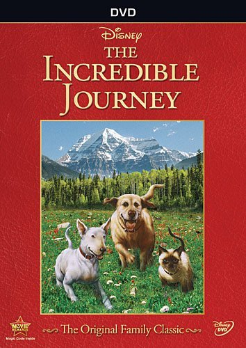 incredible-journey-incredible-journey-dvd-g