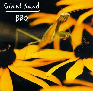 Giant Sand Backyard Barbecue Broadcast