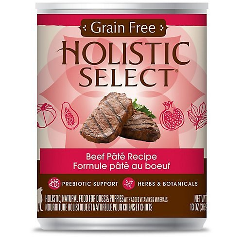 holistic-select-dog-food-grain-free-beef-pate