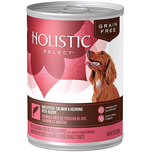 Holistic Select Dog Gf Smn Mkrl 13oz