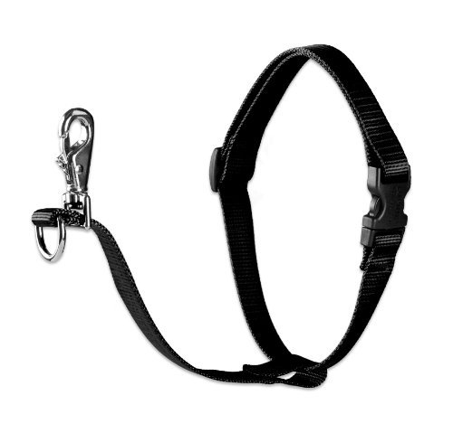 lupine-no-pull-harness-black