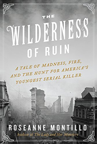 Roseanne Montillo The Wilderness Of Ruin A Tale Of Madness Fire And The Hunt For America