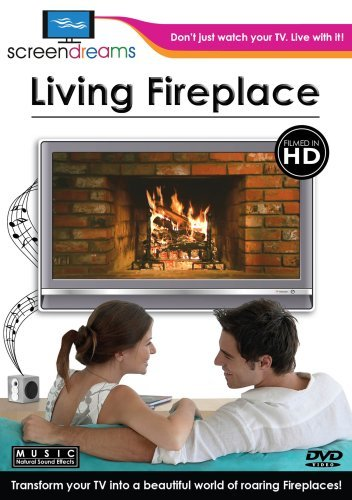 living-fireplace-living-fireplace-nr