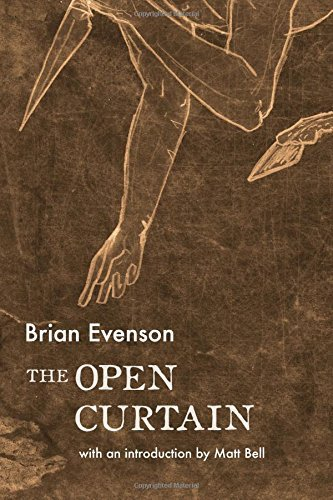 Brian Evenson The Open Curtain