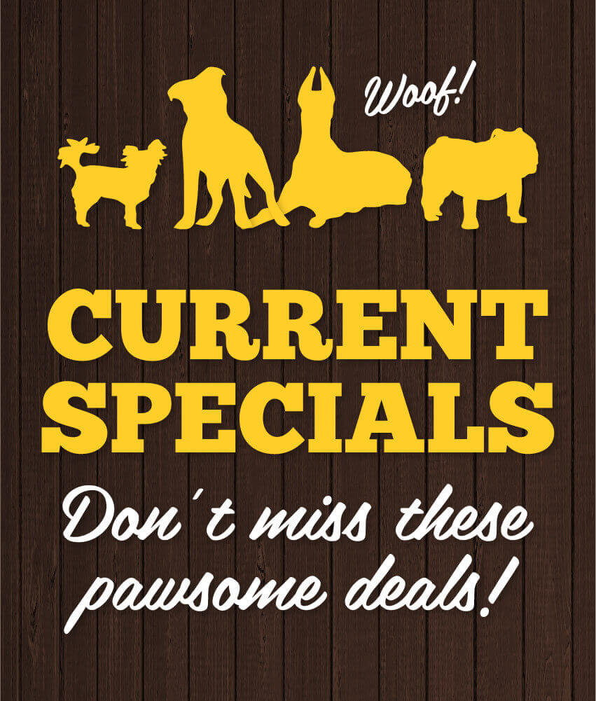 silhouettes of yellow dogs - Current Specials