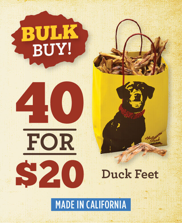 Duck feet - buy forty for twenty