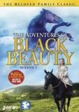 Adventures Of Black Beauty Adventures Of Black Beauty Se Season 1 Nr 3 DVD
