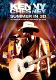 Kenny Chesney Summer In 3d Ws 3d Nr