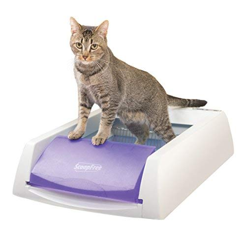 petsafe-scoopfree-self-cleaning-litter-box