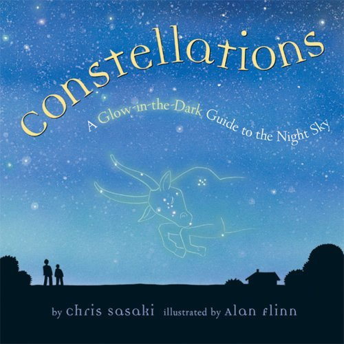 Chris Sasaki Constellations A Glow In The Dark Guide To The Night Sky