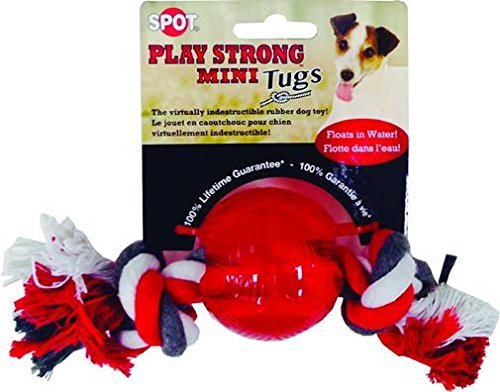 play-strong-ball-with-rope