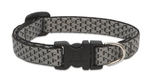 lupine-eco-dog-collar-granite