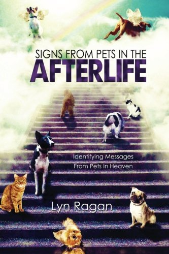 Lyn Ragan Signs From Pets In The Afterlife Identifying Messages From Pets In Heaven