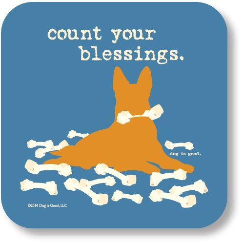 high-cotton-coaster-count-your-blessings