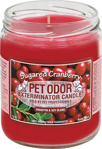 specialty-pet-pet-odor-exterminator-candle-sugared-cranberry