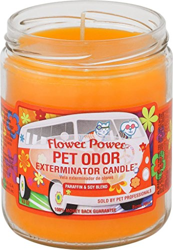 specialty-pet-candle-flower-power