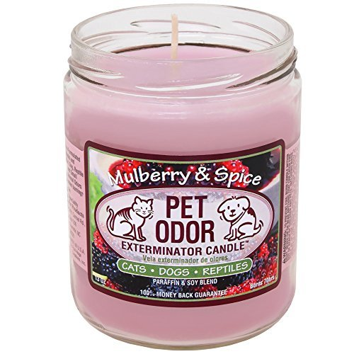 specialty-pet-pet-odor-exterminator-candle-mullberry-spice