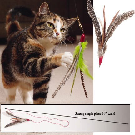 go-cat-da-bird-with-rod-assorted-turkey-feathers