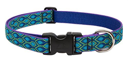lupine-snap-collar-rain-song-1-wide