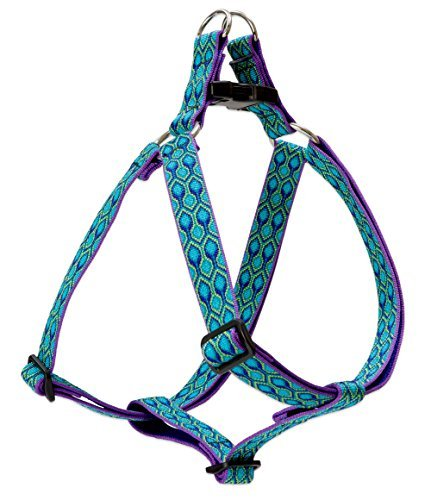 lupine-harness-rain-song-1-wide