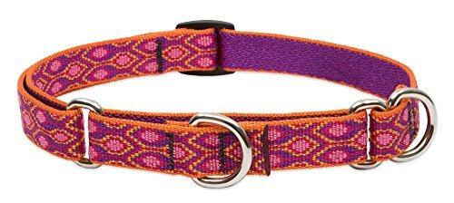 lupine-martingale-collar-alpen-glow-3-4-wide