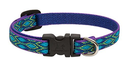 lupine-dog-collar-rain-song-1-2-wide