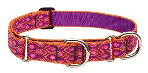 lupine-martingale-collar-alpen-glow-1-wide