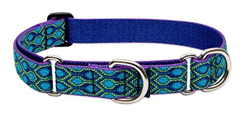 lupine-martingale-collar-rain-song-1-wide