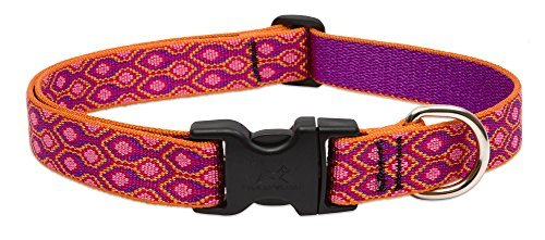lupine-snap-collar-alpen-glow-1-wide