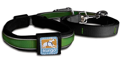 kurgo-quantum-leash