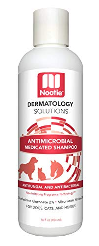 nootie-shampoo-medicated-antimicrobial