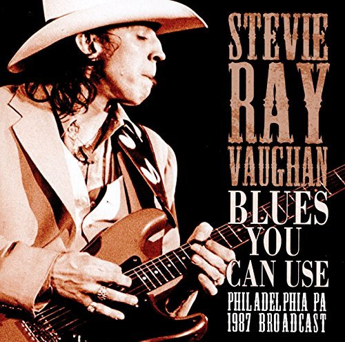 Stevie Ray Vaughan Blues You Can Use
