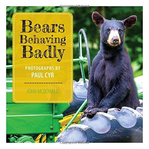 John Mcdonald Bears Behaving Badly