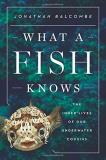 Jonathan Balcombe What A Fish Knows The Inner Lives Of Our Underwater Cousins