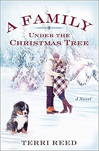 Terri Reed A Family Under The Christmas Tree