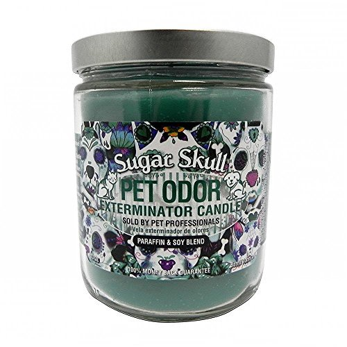 specialty-pet-pet-odor-exterminator-candle-sugar-skull