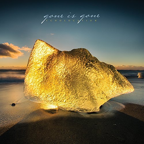 Gone Is Gone Echolocation (2 Lp Set White C