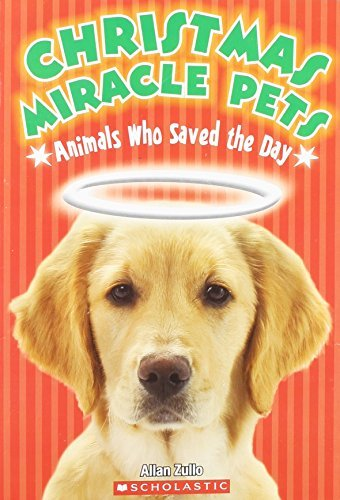 Allan Zulo Christmas Miracle Pets Animals Who Saved The Day