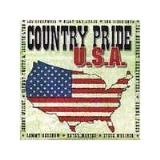 Country Pride U.S.A. Country Pride U.S.A. Greenwood Kershaw Fargo Mattea Wright Cyrus Wariner