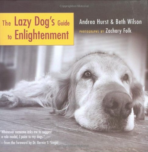 Andrea Hurst The Lazy Dog's Guide To Enlightenment