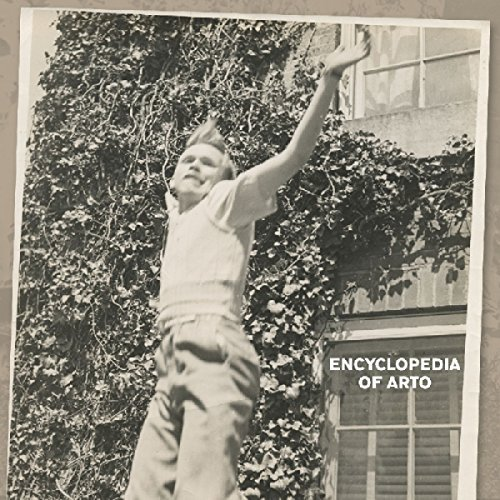 Arto Lindsay Encyclopedia Of Arto
