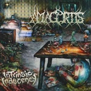 Amagortis Intrinsic Indecency