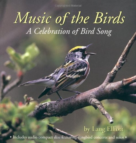 Lang Elliott Music Of The Birds A Celebration Of Bird Song
