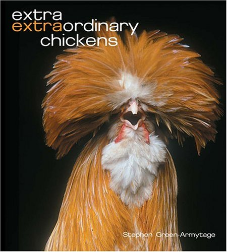 Stephen Green Armytage Extra Extraordinary Chickens