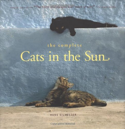 Hans Walter Silvester The Complete Cats In The Sun