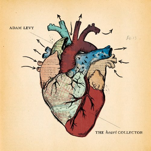 Adam Levy Heart Collector