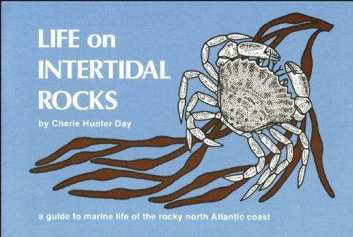 Cherie Hunter Day Life On Intertidal Rocks A Guide To The Marine Life Of The Rocky North Atl Ecco
